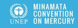 Minamata Convention